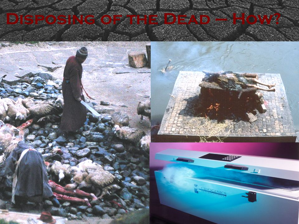 Disposing of the Dead – How