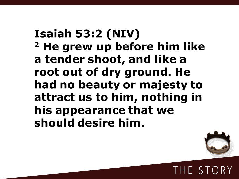 Isaiah 53:2 (NIV)