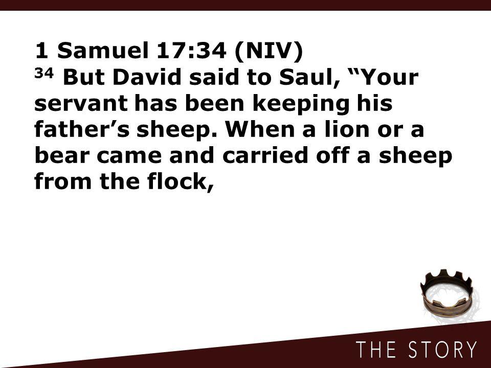 1 Samuel 17:34 (NIV)
