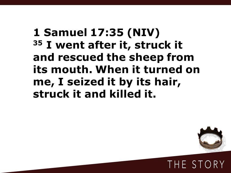 1 Samuel 17:35 (NIV)