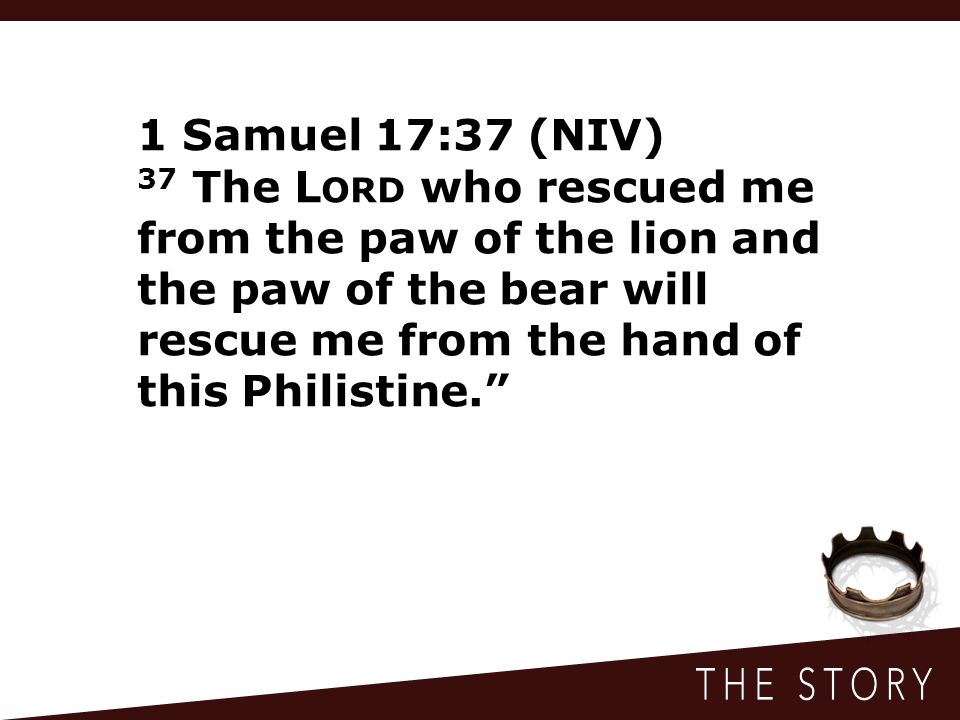 1 Samuel 17:37 (NIV) 37 The Lord who rescued me from the paw of the lion and the paw of the bear will rescue me from the hand of this Philistine.