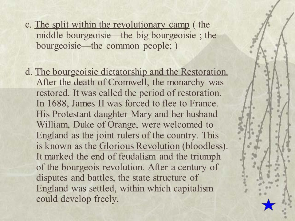 c. The split within the revolutionary camp ( the middle bourgeoisie—the big bourgeoisie ; the bourgeoisie—the common people; )