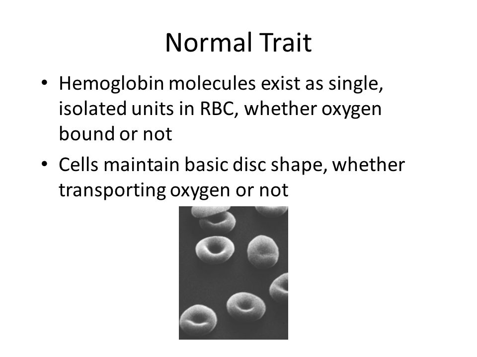 Normal Trait Hemoglobin molecules exist as single, isolated units in RBC, whether oxygen bound or not.