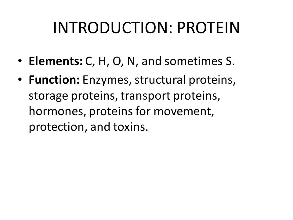 INTRODUCTION: PROTEIN
