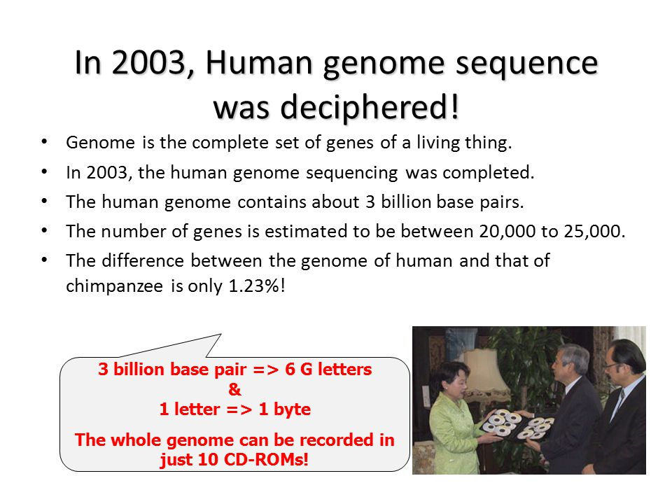 In 2003, Human genome sequence was deciphered!