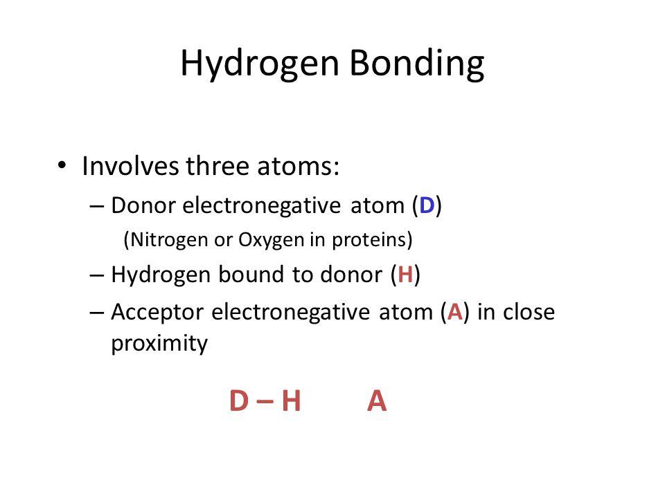 Hydrogen Bonding D – H A Involves three atoms: