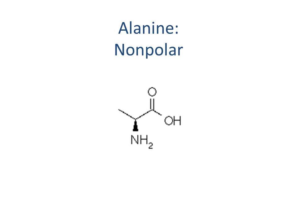Alanine: Nonpolar