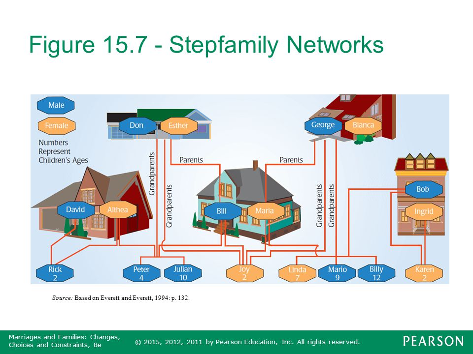 Figure 15.7 - Stepfamily Networks