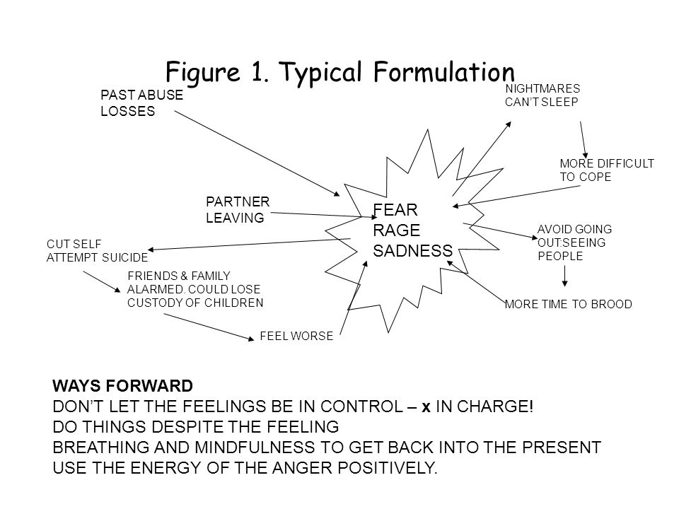 Figure 1. Typical Formulation