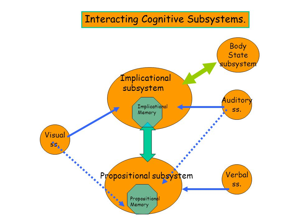 Interacting Cognitive Subsystems.