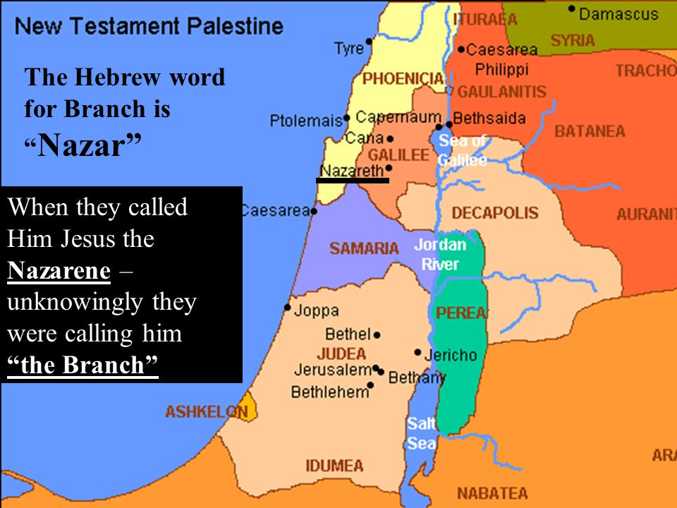 The Hebrew word for Branch is Nazar