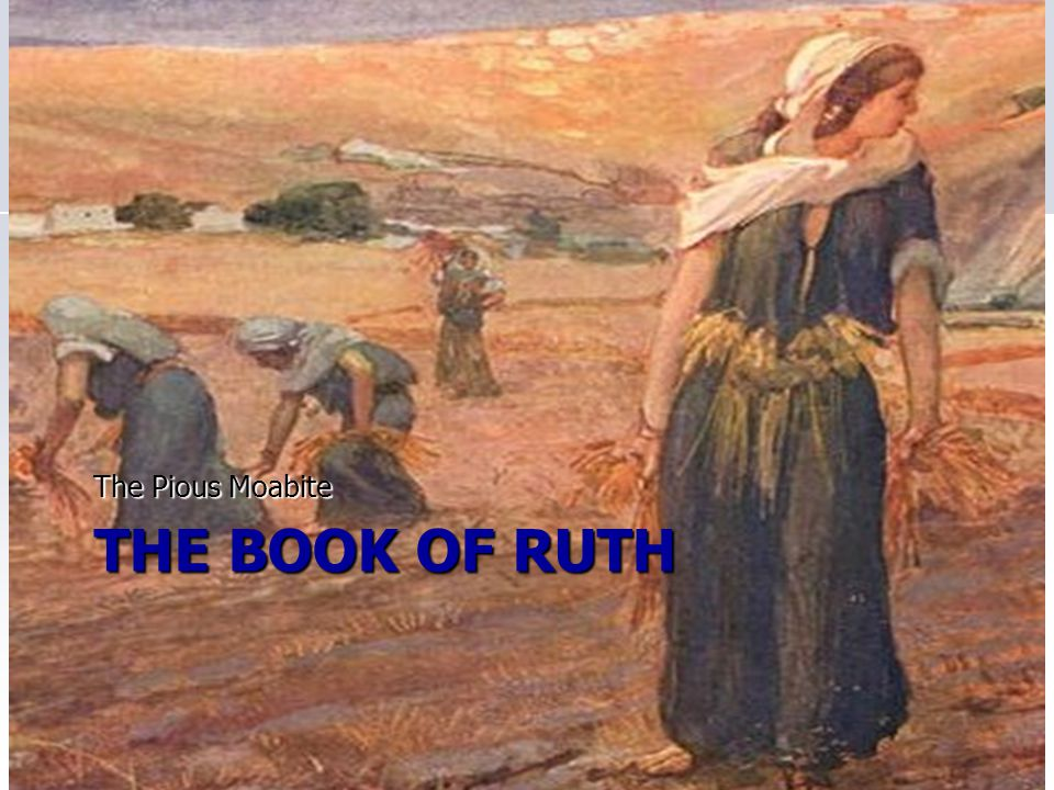The Pious Moabite The Book of Ruth
