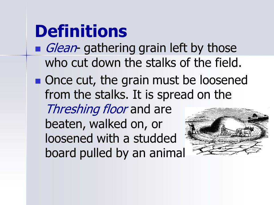 Definitions Glean- gathering grain left by those who cut down the stalks of the field.