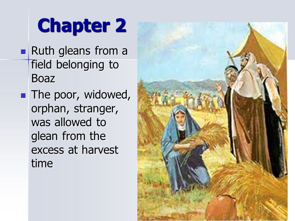 Chapter 2 Ruth gleans from a field belonging to Boaz