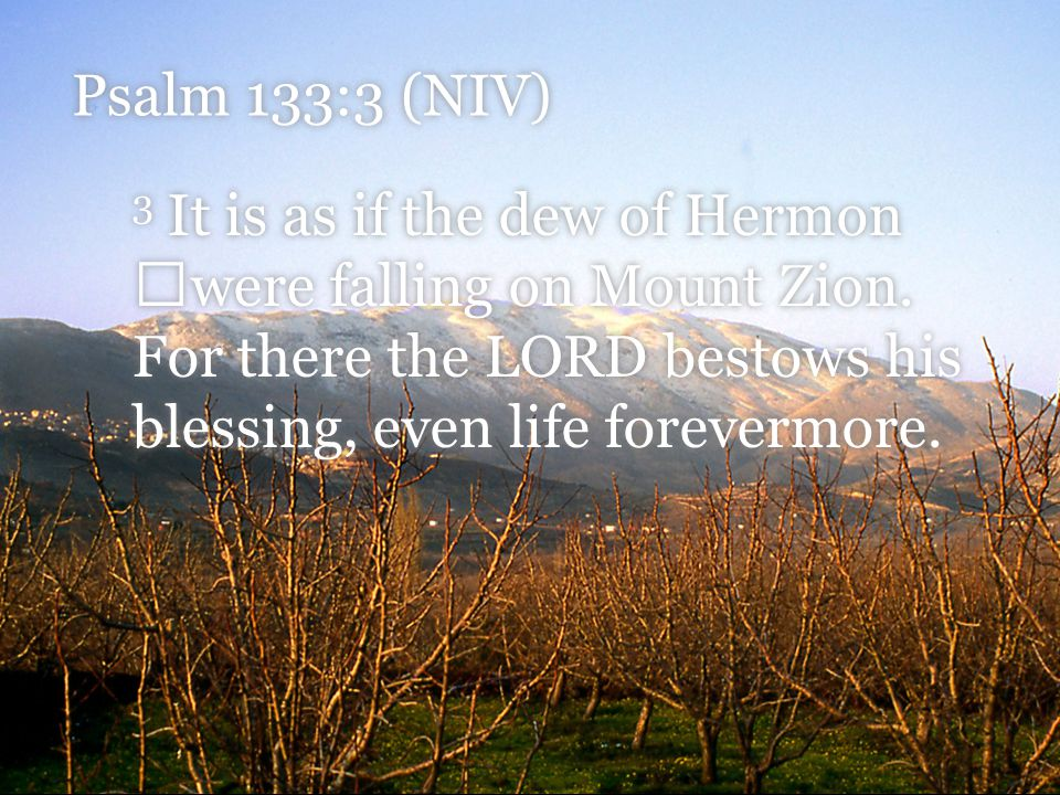 Psalm 133:3 (NIV) 3 It is as if the dew of Hermon were falling on Mount Zion.