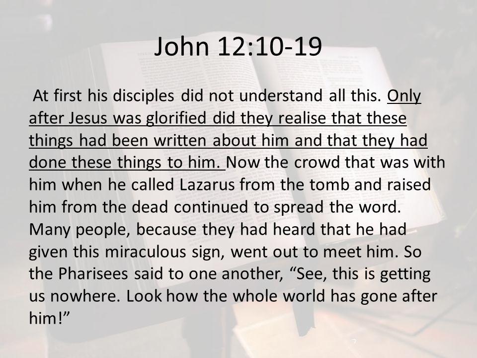John 12:10-19