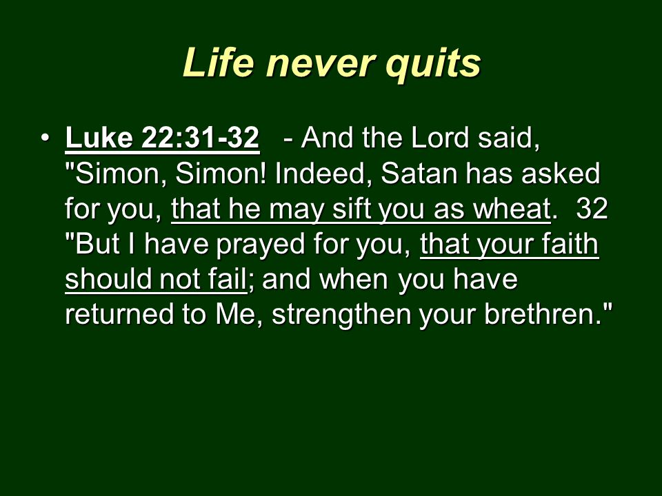 Life never quits