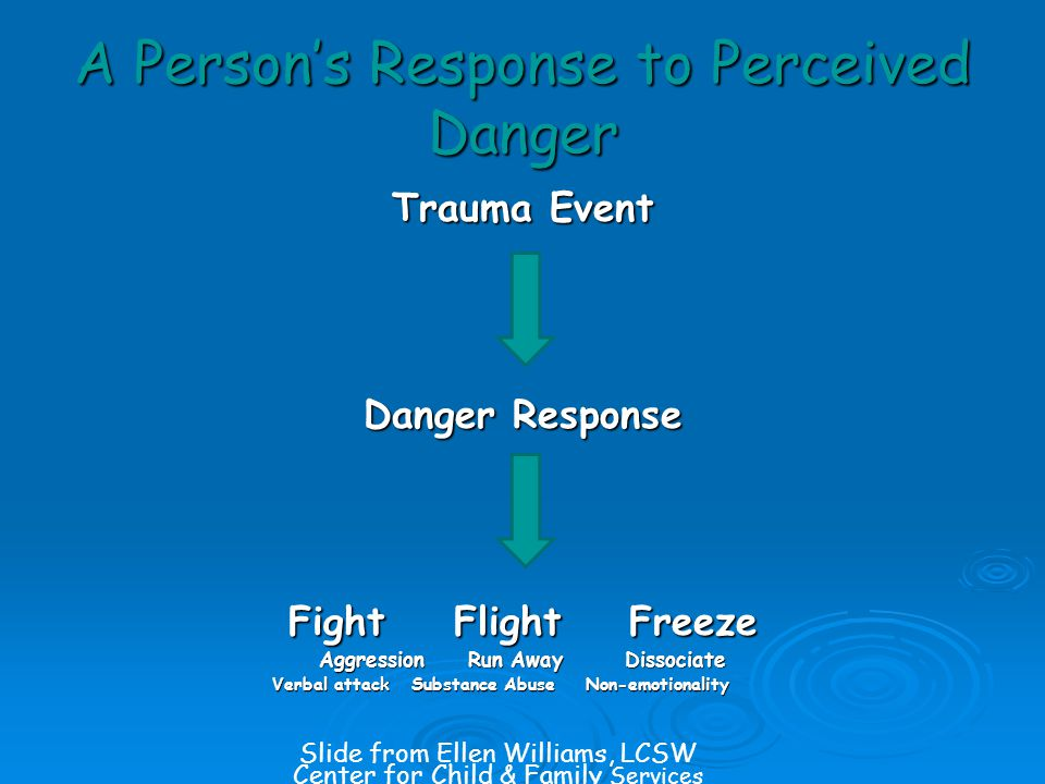 A Person's Response to Perceived Danger