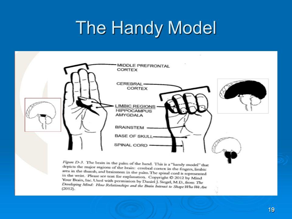 The Handy Model