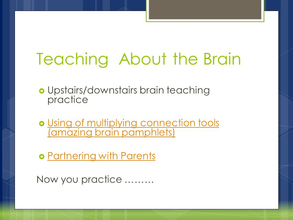 Teaching About the Brain