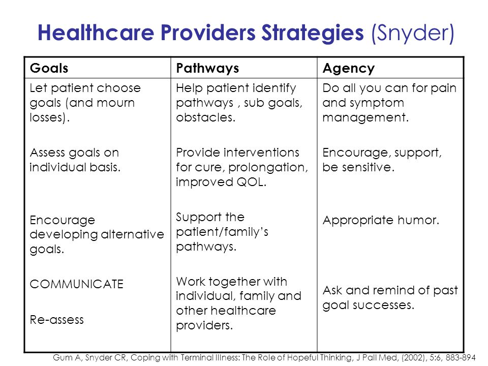 Healthcare Providers Strategies (Snyder)