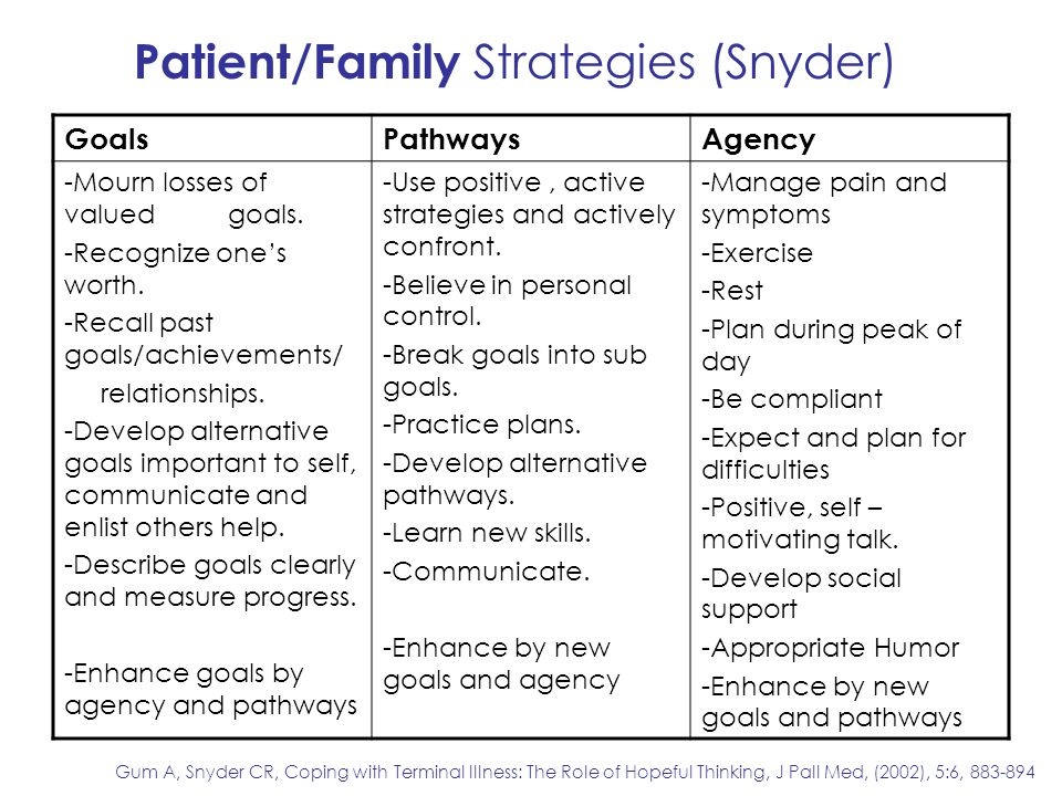 Patient/Family Strategies (Snyder)