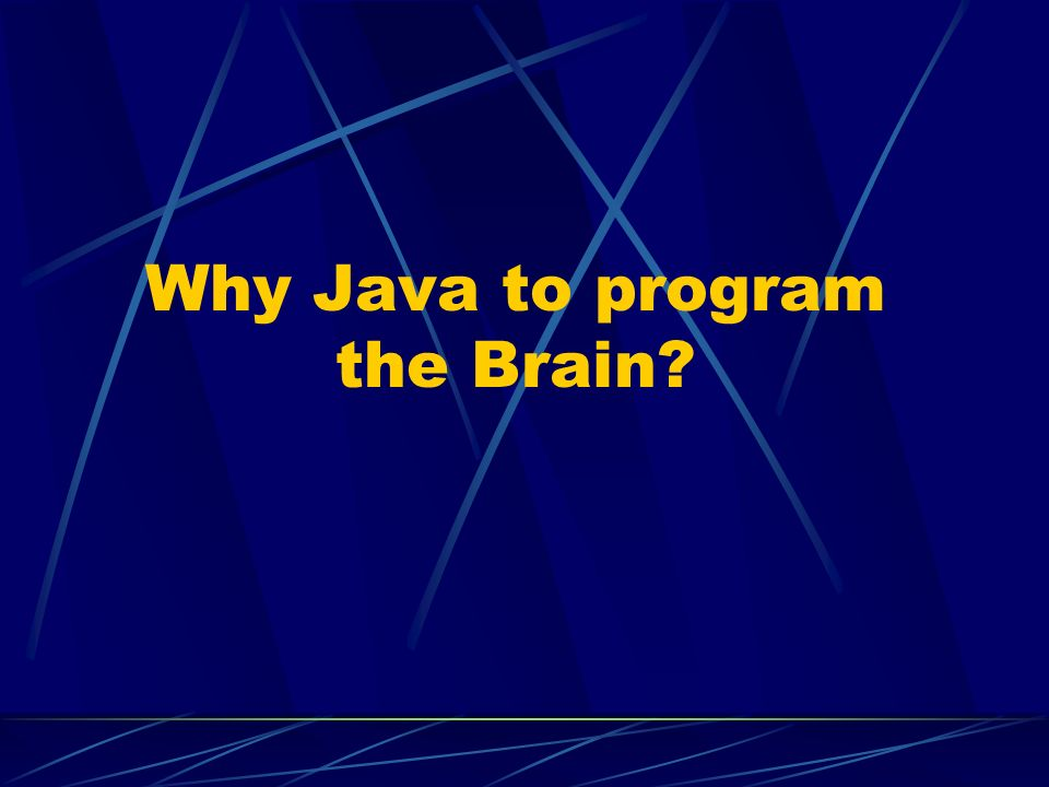 Why Java to program the Brain