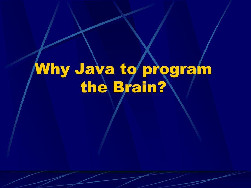 Why Java to program the Brain
