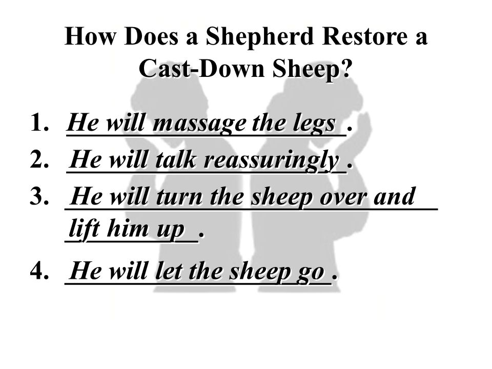 How Does a Shepherd Restore a Cast-Down Sheep