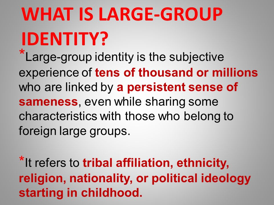WHAT IS LARGE-GROUP IDENTITY