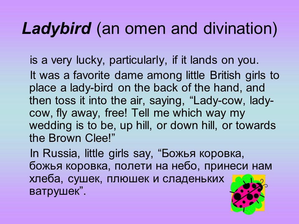 Ladybird (an omen and divination)