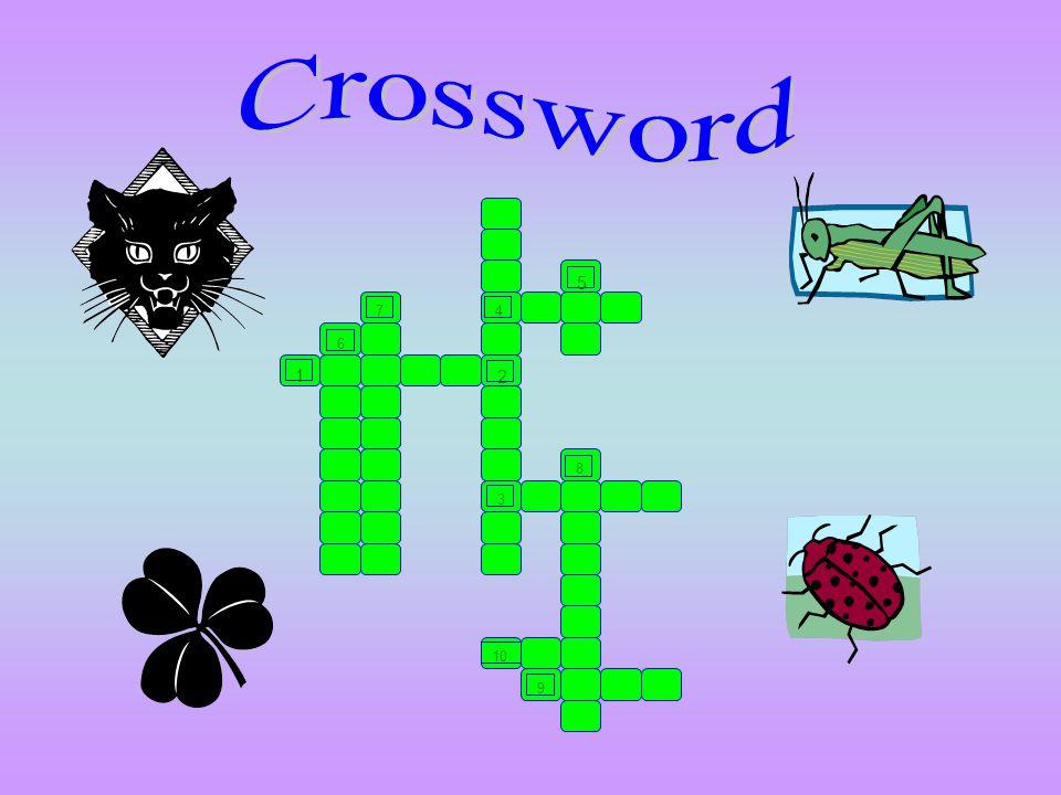 Crossword 1 6 7 5 4 2 3 8 10 9