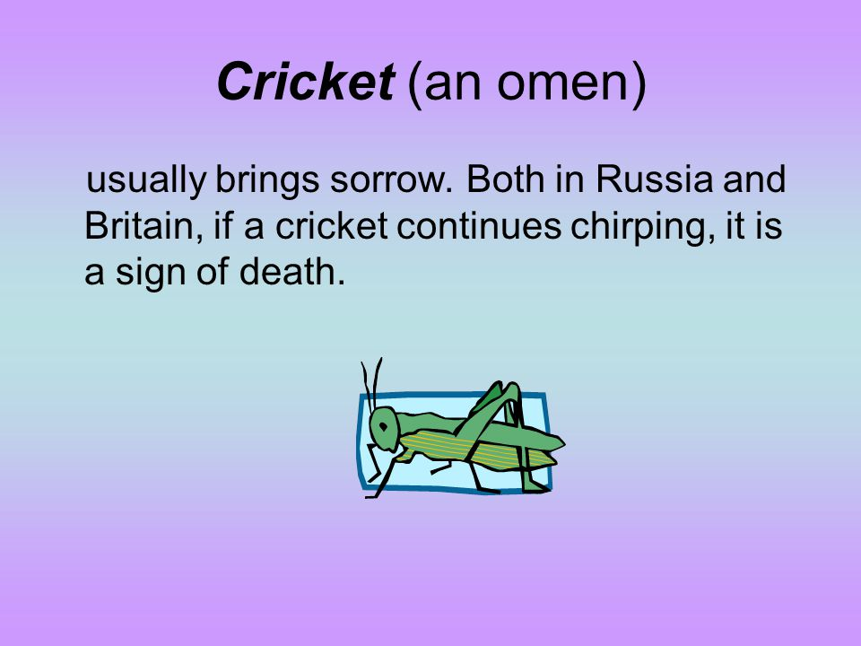 Cricket (an omen) usually brings sorrow.