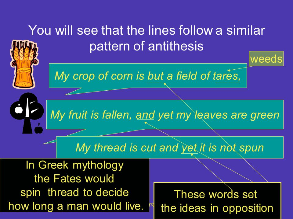 You will see that the lines follow a similar pattern of antithesis