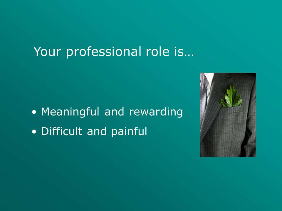 Your professional role is…