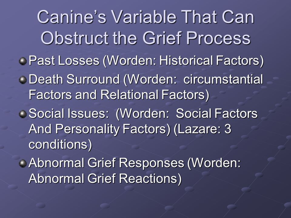Canine's Variable That Can Obstruct the Grief Process