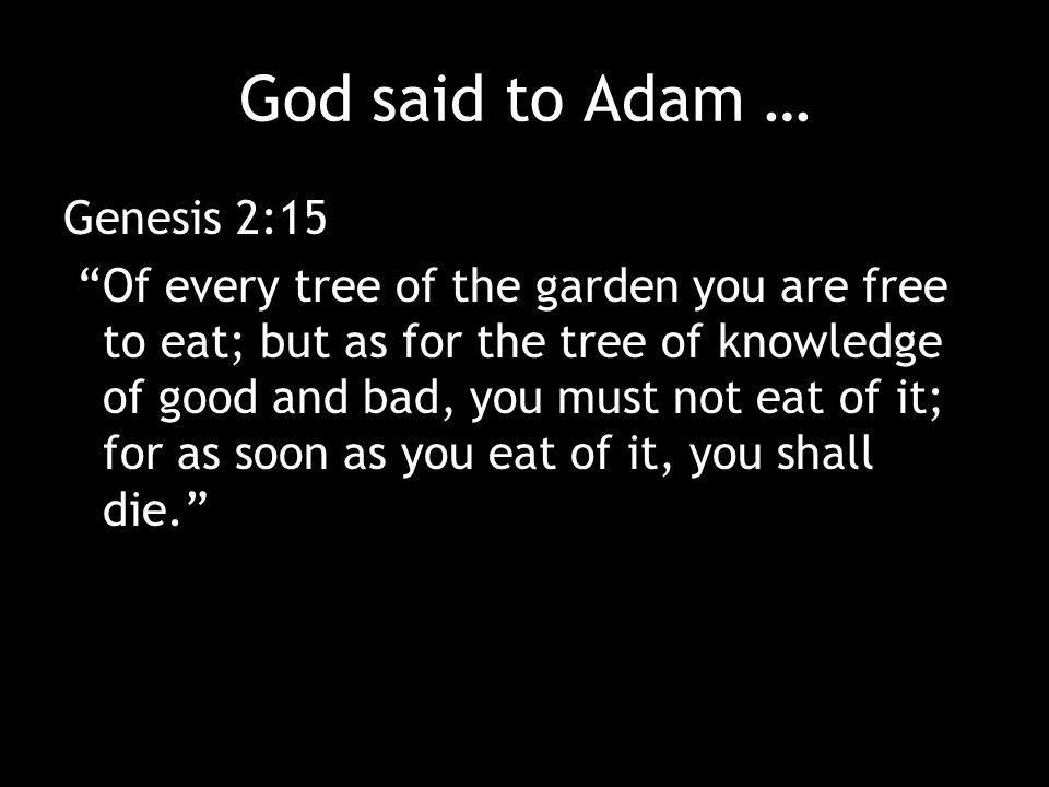 God said to Adam … Genesis 2:15