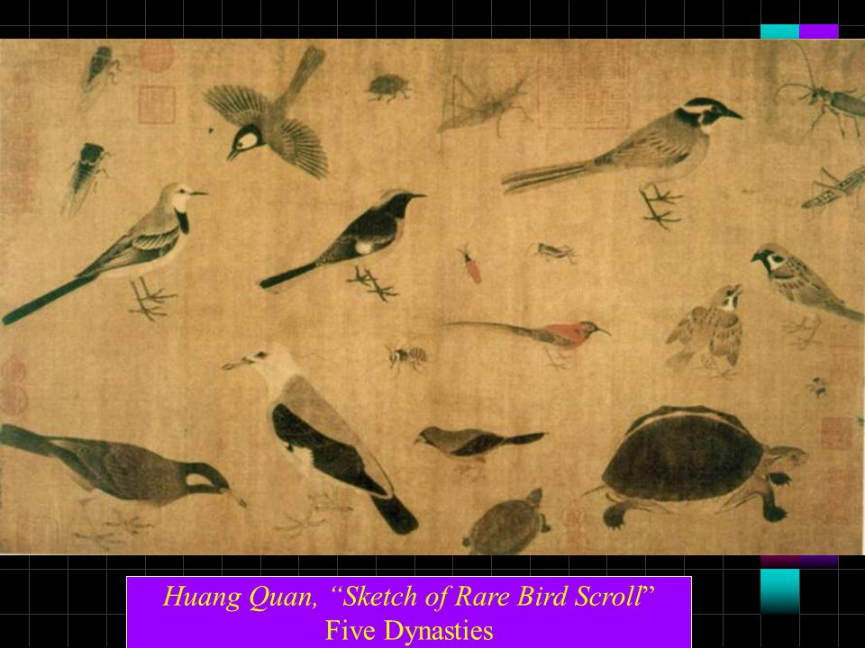 Huang Quan, Sketch of Rare Bird Scroll