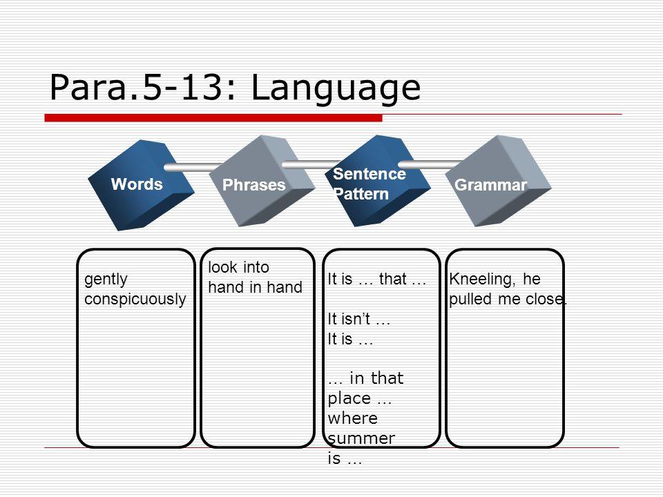 Para.5-13: Language Sentence Pattern Words Phrases Grammar look into