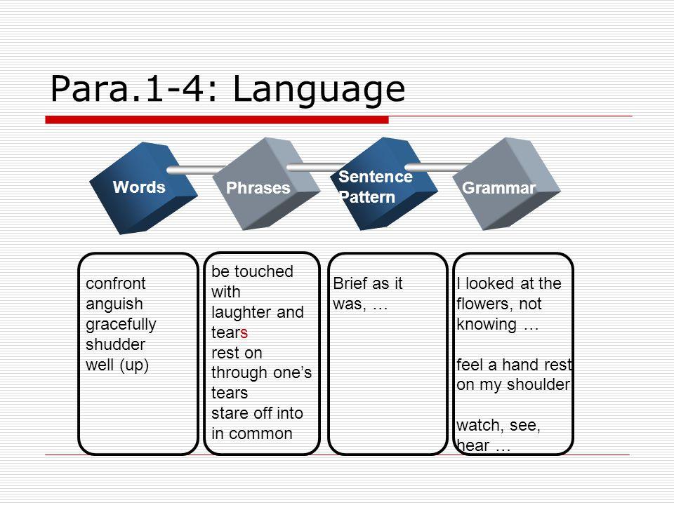 Para.1-4: Language Sentence Pattern Words Phrases Grammar