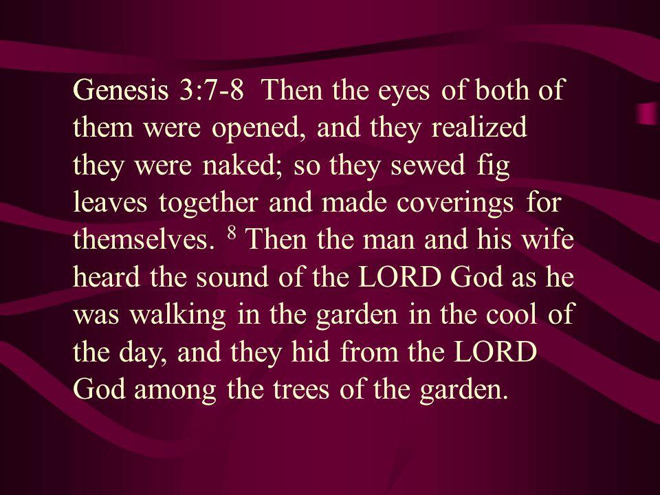 Genesis 3:7-8