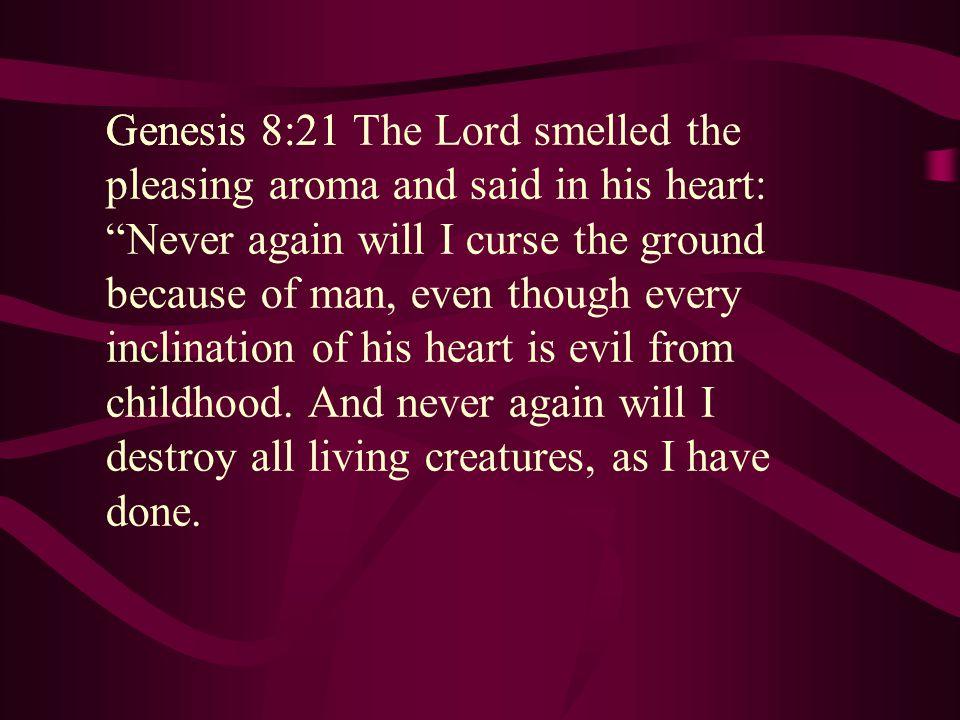 Genesis 8:21