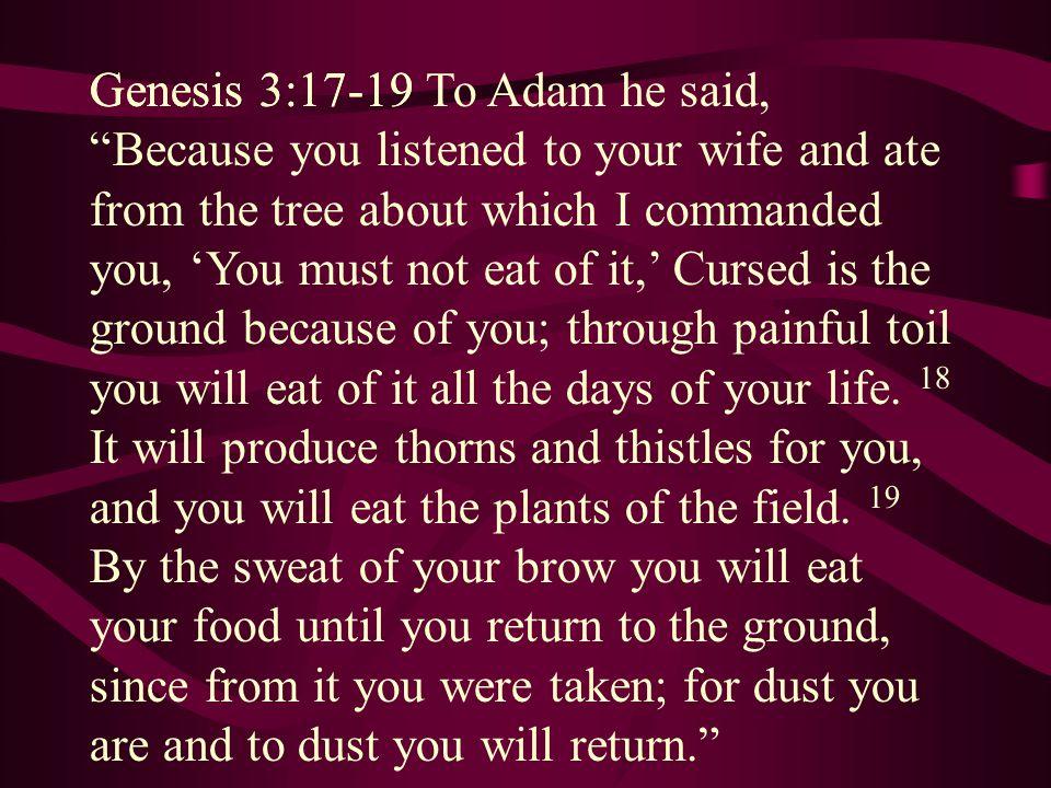 Genesis 3:17-19