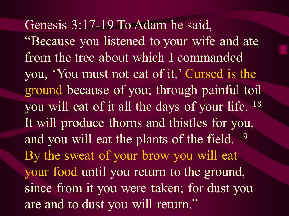 Genesis 3:17-19 To Adam he said, Because you listened to your wife and ate from the tree about which I commanded you, 'You must not eat of it,' Cursed is the ground because of you; through painful toil you will eat of it all the days of your life.