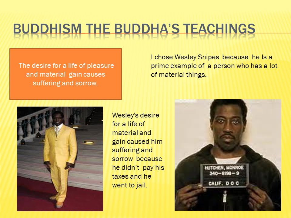 Buddhism the buddha's teachings