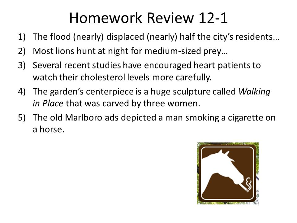 Homework Review 12-1 The flood (nearly) displaced (nearly) half the city's residents… Most lions hunt at night for medium-sized prey…