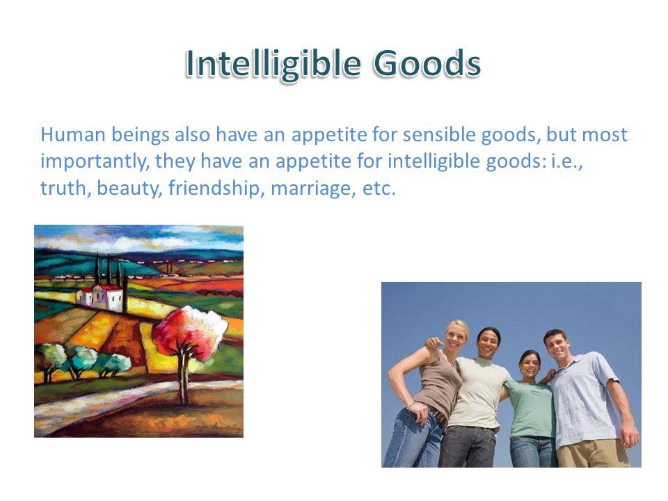 Intelligible Goods