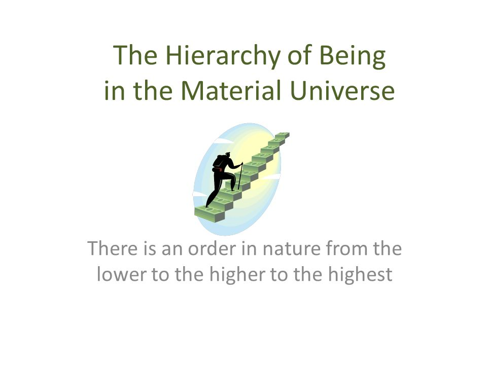 The Hierarchy of Being in the Material Universe
