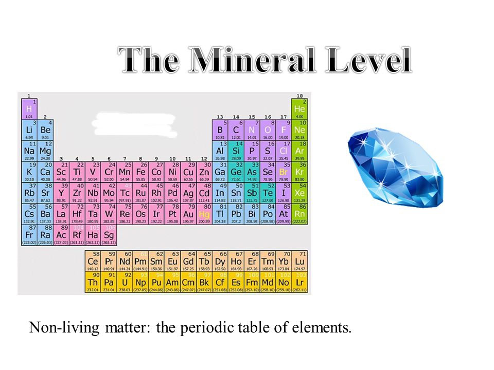 The Mineral Level Non-living matter: the periodic table of elements.