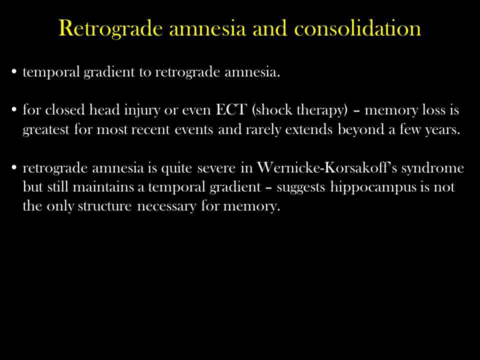 Retrograde amnesia and consolidation